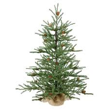 Top Live Christmas Trees by Stylish Ideas Table Top Christmas Trees Live Tabletop Tree App