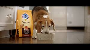 Feeding Dog Pumpkin Constipation by Nature U0027s Recipe Grain Free Chicken Sweet Potato U0026 Pumpkin Recipe