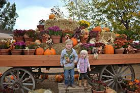 Heather Farms Pumpkin Patch by Visiting Anderson Farms Fall Festival In Erie Colorado Building