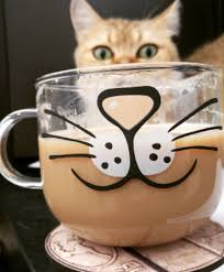 cat coffee 6 foods you shouldn t give your cat cats club