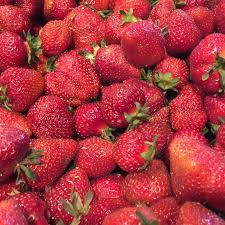 Vancouver Pumpkin Patch Wa by Find Local Strawberries From Vancouver Wa Farms And More