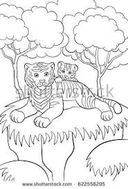 Full Size Of Animalcoloring Book Pictures Cute Animal Coloring Pages Colouring For Kids
