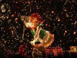 Bellevue Singing Christmas Tree by Shoreline Area News 2012