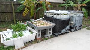 Aquaponics Hydroponic Home Garden Backyard Food Solutionsbackyard Oc Aquaponics Project Admin What Is Learn About Aquaponic Plant Growing Photos Friendly Picture With Amusing Systems Grow 10x The Today Bobsc Ezgro Amazoncom Vertical Gardening Vegetable Tower Indoor Outdoor From Fish To Ftilizer Greenhouse Im In My City Back Yard Yes I Am Satuskaco