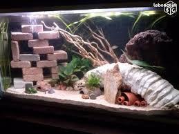 aquarium 300l clasf