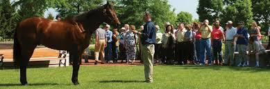 Farmers Shed Lexington Sc by Horse Farm Tours In The Horse Capital Of The World Lexington