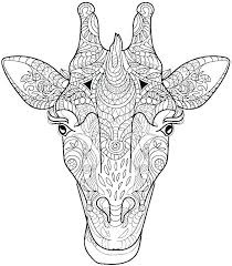 Wild Animals Coloring Pages Pdf Animal For Adults Book