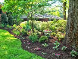 Live Oak Services, LLC - Tree Removal, Paver Patio | Live Oak ... Gallery Team Jo Services Llc 42 Best Diy Backyard Projects Ideas And Designs For 2017 Two Men Passing A Chainsaw Over Fence Safely Yard Pool Service Conroe Tx Get Your Ready Summer Aqua Ava Ln Cascade Maintenance Services Raised Flower Bed With Decorative Stone A Japanese Maple By Chases Landscape Beautiful Clean Up Pictures With Excellent Cost Carbon Valley Home Improvement Hdyman Leaf Environmental