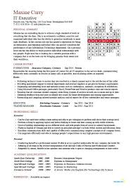 IT Executive Resume Example Sample Technology Technical Skills Expertise College
