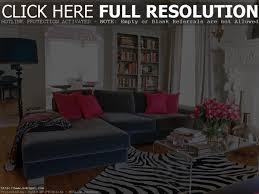 Animal Print Room Decor by Animal Print Living Room Ideas Home Design Ideas
