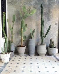 Best Bathroom Pot Plants by Wabi Sabi Inspiration Interior Design Bathroom Design Villa