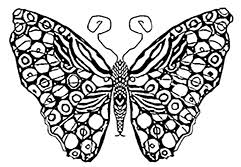 Butterfly Spots Coloring Page