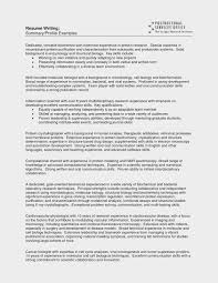 Impressive Resume Profile Sample Good Titles Template Title Summary