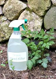 Weed Killer Spray 3 Ingredient Organic That Works Bottle Pump