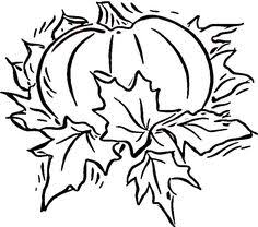 Pumpkin Patch Coloring Pages by Free Downloadable Coloring Page Perfect For Fall Make Take