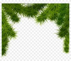 Pine Branches Png Clipart Image