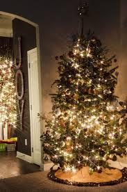 Rice Krispie Christmas Tree Ornaments by 39 Best Christmas Images On Pinterest Christmas Ideas Christmas