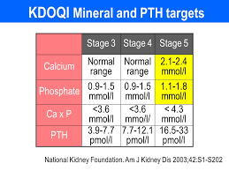 pth normal range uk cardiovascular disease and vascular calcification in ckd ppt