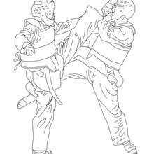 Taekwondo Combat Sport Coloring Pages