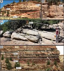 Trough Cross Bedding by Highly Seasonal And Perennial Fluvial Facies Implications For