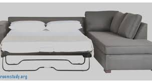 Sleeper Sofa Bar Shield Twin by Livingroomstudy Org Living Room Design Awesome Small Scale