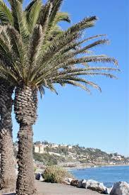 Rosenthal Wine Bar Patio Malibu by Best 25 Malibu Los Angeles Ideas On Pinterest Malibu Beach