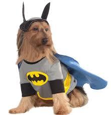 cat batman costume best 25 batman costume ideas on dachshund