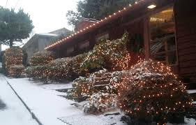 Recycle Christmas Trees Vancouver Wa by Cwags Clean Windows And Gutters In Portland And Vancouver