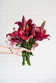 How To Make Your Flowers Last Longer | Flower Glossary 1800 Flowers Coupons Boston Flower Delivery Promo Codes For 1800flowers Florists Thanks Expectationvsreality How Do I Redeem My 1800flowerscom Discount Veterans Autozone Printable Coupon June 2019 Sears Code Online Crocs Promo January Carters Canada Airsoft Gi Coupons Promotional Flowerscom 10 Off Amazon White Flower Farm Joanns 50 Ares Casino Flowerama Uber Denver Jetblue December 2018 Kohls 20 Available September