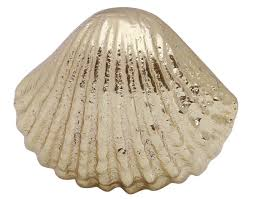 100 Sea Shell Design Bulk Wholesale Handmade Scallop Knobs Pulls In