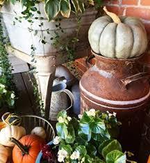 Pumpkin Patches Mankato Mn by Mankato Minnesota Instagram Photos And