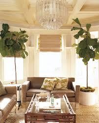 Plants In Bathroom Feng Shui by Easy Feng Shui Tips Popsugar Home