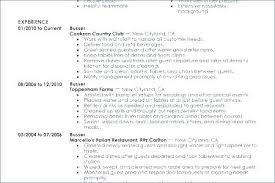 Restaurant Busser Resume Sample Example Top Table Examples To Job Description No Experience