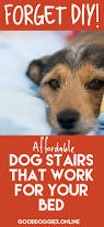 Pet Stairs For Tall Beds by Forget Diy These Dog Steps For Bed Get It Done For Less Good