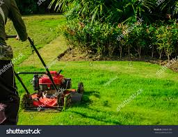 Lawn Mower Cutting Green Grass Backyardgarden Stock Photo ... Playful Dog Running Away From Ball White Labradoodle Putting Greens Golf Just Like Grass Tour Backyard Green Cost Synlawn Itallations Reviews Testimonials Our Diy Kids Theater Emily A Clark Unique Architecturenice Little Bit Funky How To Make A Backyard Putting Green Wood Fence On Colorful House Stock Vector 606411272 Concrete Ideas Hgtvs Decorating Design Blog Hgtv Puttinggreenscom One Story Siding With Lawn View From The