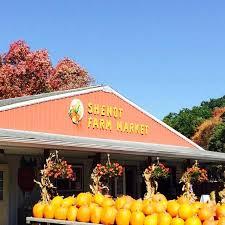 Colorado Pumpkin Patch Farm Camp by 10 Best Pumpkin Patches Near Pittsburgh In 2016