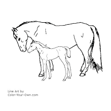 Simple Horse Coloring Pages Foal Flowers In A Vase
