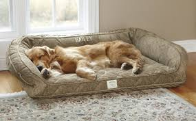 Tempur Pedic Dog Beds by Memory Foam Dog Beds Free Standard Us Shipping Orvis Tempur