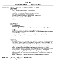 Download Warehouse Assistant Manager Resume Sample As Image File