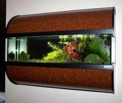 aquarien vorgestellt aquariendesign dingolfing