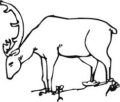 45 Deer Templates