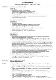 Lab Assistant Resume Samples | Velvet Jobs Top 8 Labatory Assistant Resume Samples Entry Leveledical Assistant Cover Letter Examples Example Research Resume Sample Writing Guide 20 Entrylevel Lab Technician Monstercom Zip Descgar Computer Eezemercecom 40 Luxury Photos Of Best Of 12 Civil Lab Technician Sample Pnillahelmersson 1415 Example Southbeachcafesfcom Biology How You Can Attend Grad