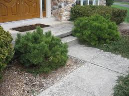 Stone Walkway Design | Greenworks | Spring House PA 44 Small Backyard Landscape Designs To Make Yours Perfect Simple And Easy Front Yard Landscaping House Design For Yard Landscape Project With New Plants Front Steps Lkway 16 Ideas For Beautiful Garden Paths Style Movation All Images Outdoor Best Planning Where Start From Home Interior Walkway Pavers Of Cambridge Cobble In Silex Grey Gardenoutdoor If You Are Looking Inspiration In Designs Have Come 12 Creating The Path Hgtv Sweet Brucallcom With Inside How To Your Exquisite Brick