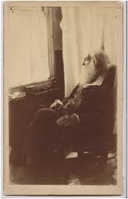 Walt Whitman The Wound Dresser Pdf by Walt Whitman Quarterly Review Vol 30 No 2