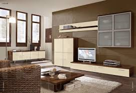 Creative Tv Wall Units For Living Rooms Home Design And Interior Unique Room Unit