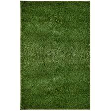 Imagine Rugs Green Indoor Outdoor Area Rug & Reviews