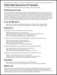 Sales Executive Cv Example Doc Sample Resume Field And Marketing Manager