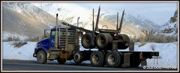 Logging Truck 1988 Kenworth T800 Logging Truck For Sale 541706 Miles Spokane Truck Wikipedia Loses Load Near Mayook The Drive Fm 849 Pre Load Ta Off Highway Log Trailer Stacked Wooden Logs Tree Trunks On A Logging In Ktaia Stock This Electric Driverless Can Carry Up To 16 Tons Of Wel Built Trucks And Trailers Trinder Eeering Big Moving Wood From Harvest Field Plant Timber Simulator Apk Download Free Simulation Game Photo By Jeremy Rempel Highways Today Code 3 Tekno Scania 4 Rigid With Drag Wsitekno Etc Police Report Fding Marijuana That Spilled