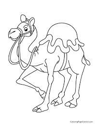 Coloringpages1001 Coloring Pages Camel 01 Page Central