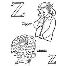Letter Z For Zipper And Flower Zinnia